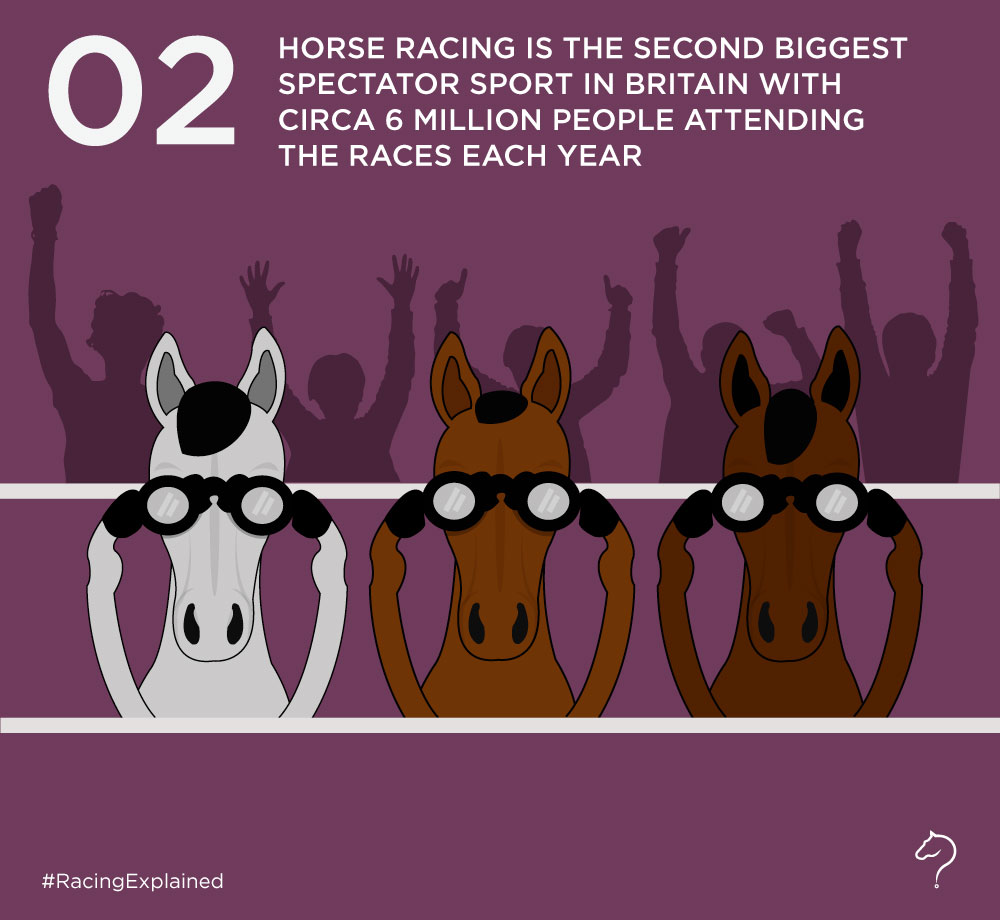 How popular is horseracing? – Racing Explained
